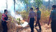 Permalink ke Pagi Gelar Siaga Kebakaran, Siangnya Hutan Sukun Terbakar